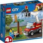 LEGO City Fire Barbecuebrand blussen 60212