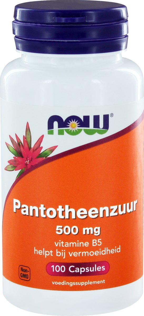 Now Panthotheenzuur 500mg 100caps