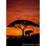 Komar Fotobehang National Geographic African Sunset 194x270 cm 4-501