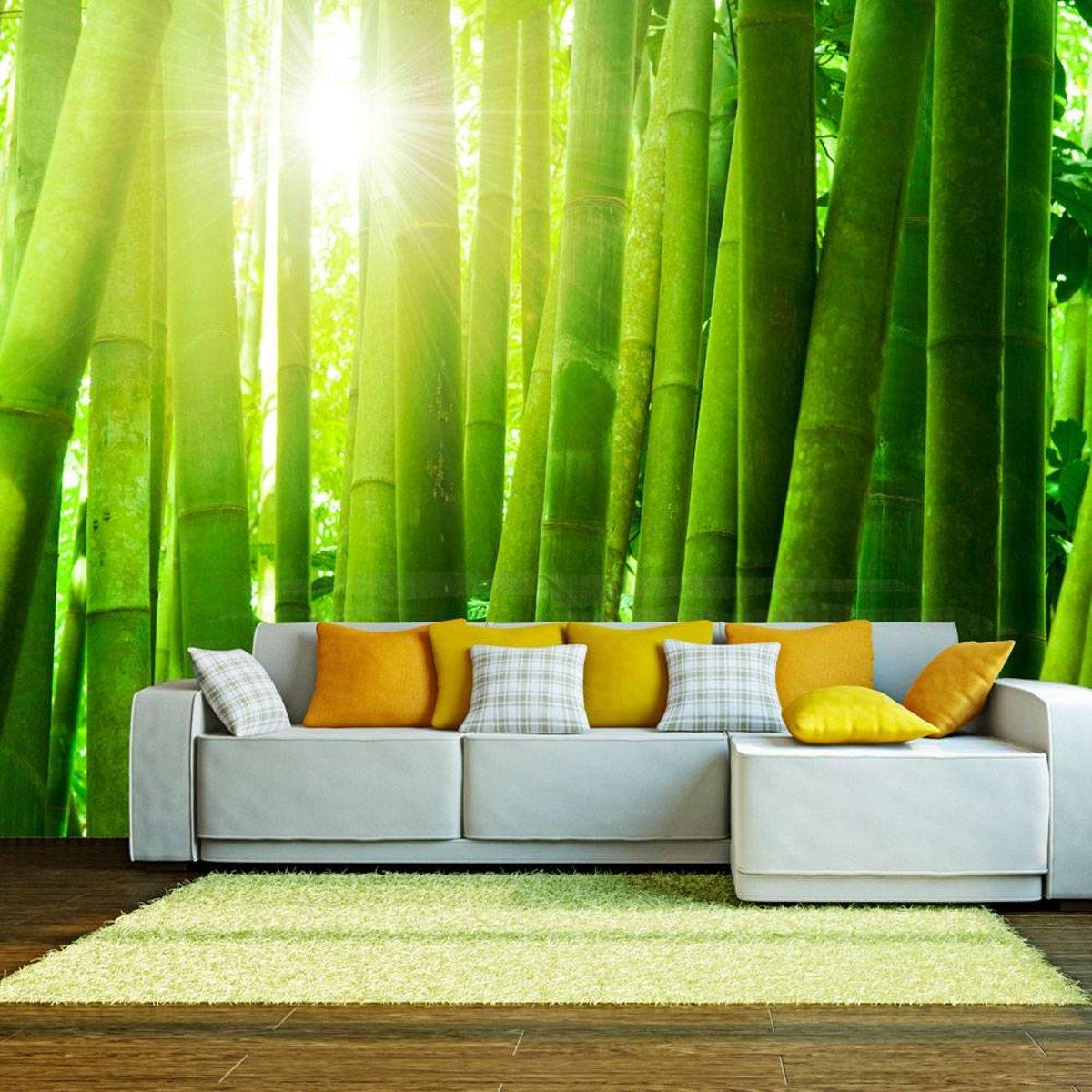 Fotobehang - Zon en bamboe - 400x309