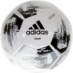 adidas VoetbalKinderen en volwassenen - wit/zwart