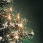 Kerstverlichting 10 Gloeilamp Warm Wit 1,2m