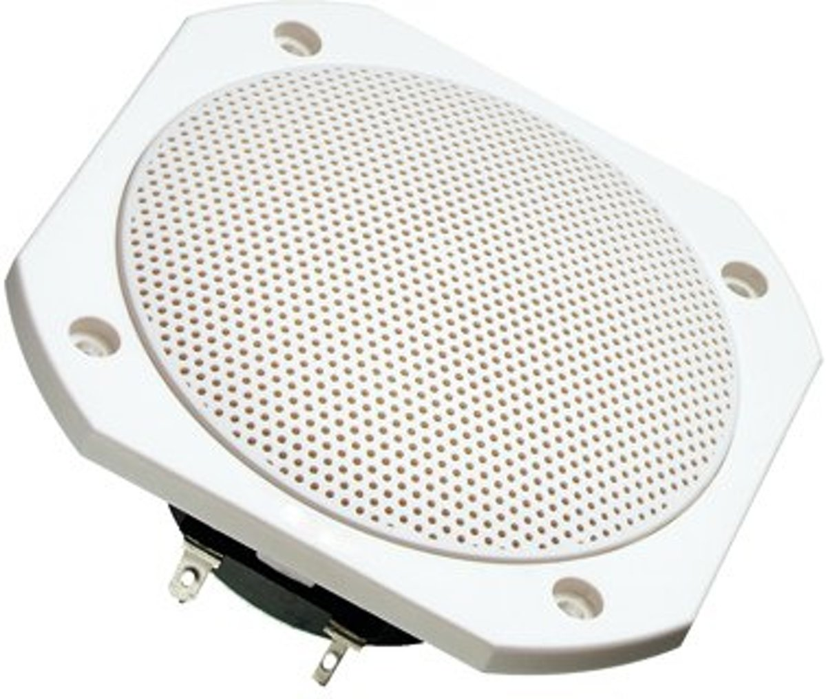 Visaton luidsprekers Full-range luidspreker zoutwaterbestendige 10 cm (4