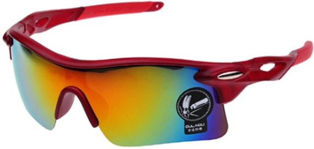 Wielren - Schaats - Ski & Snowboard Bril - Volwassenen - Fietsbril