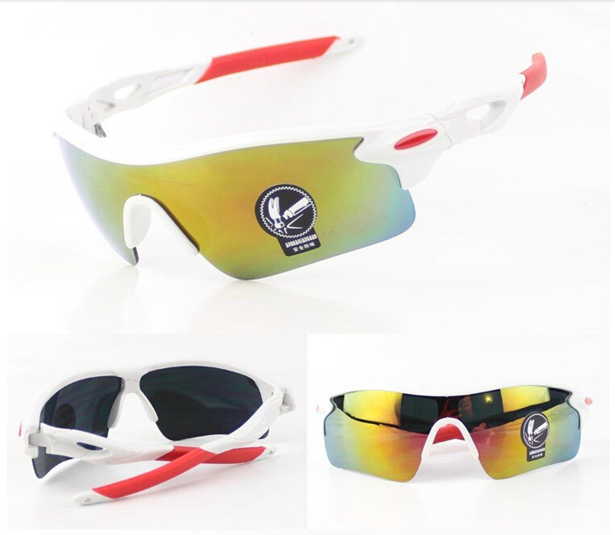 Wielren - Schaats - Ski & Snowboard Bril - Volwassenen - Fietsbril - Multicolour