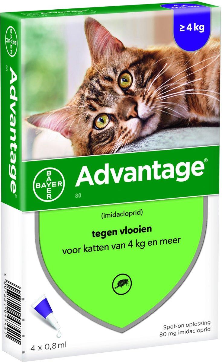 Bayer Anti vlooienmiddel Advantage 80 <gt/> 4 kg - 4 x 0,8ml