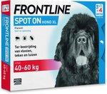 Frontline Spot-On XL Anti vlooienmiddel - Hond - 4 pipetten
