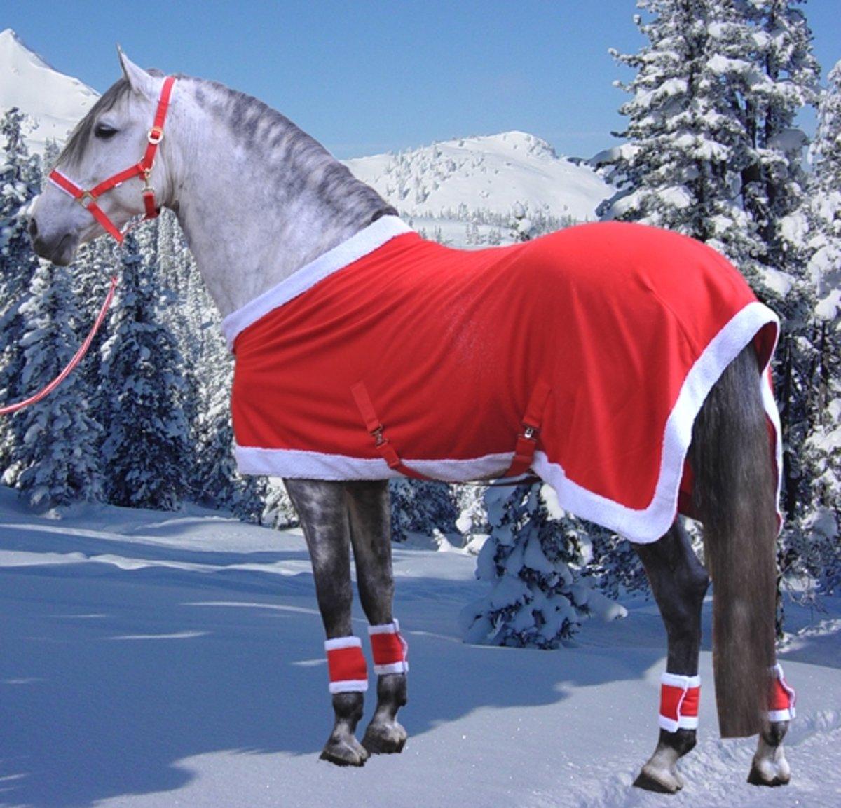 Zweetdeken -Christmas- rood/wit 165