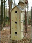 Vogelhuisje Mussen Esschert Design Best for Birds