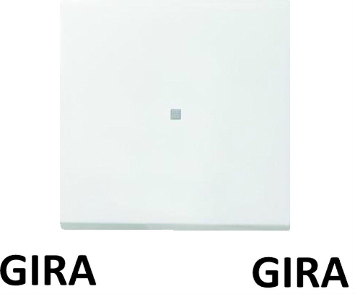 GIRA ENET OPZETSTUK S/D ZWG F100 5490112