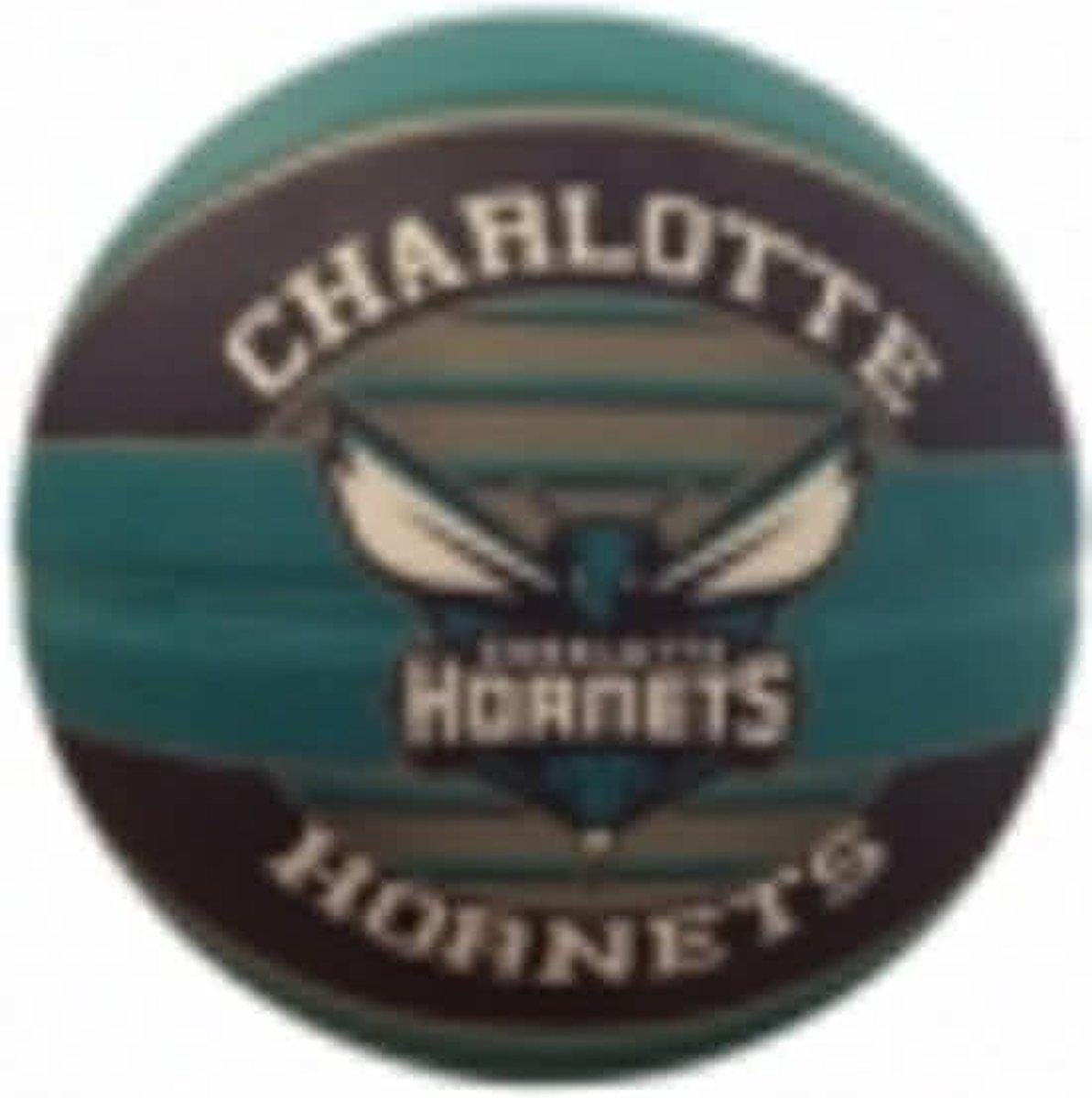 Spalding basketbal Charlotte Hornets maat 7